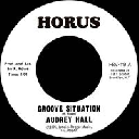 "Horus - Uk Audrey Hall - Jrm Orchestra Groove Situation - Situation Version X Oldies Classic 7"" rv-7p-15118"